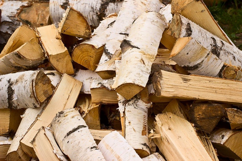 Lakewood Tree Experts Offer Firewood For Sale and Delivery